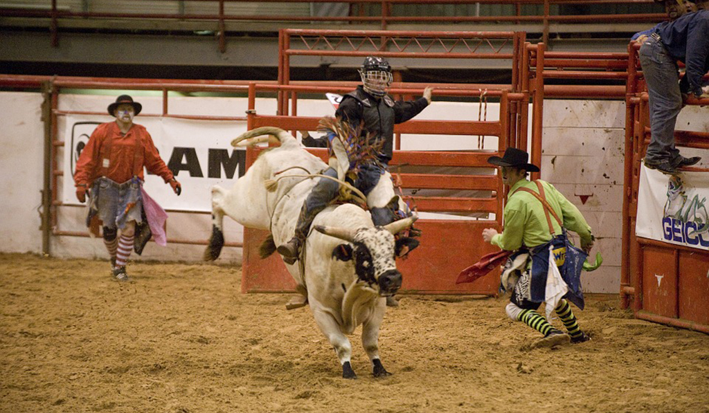 Bull riding at the NFR.