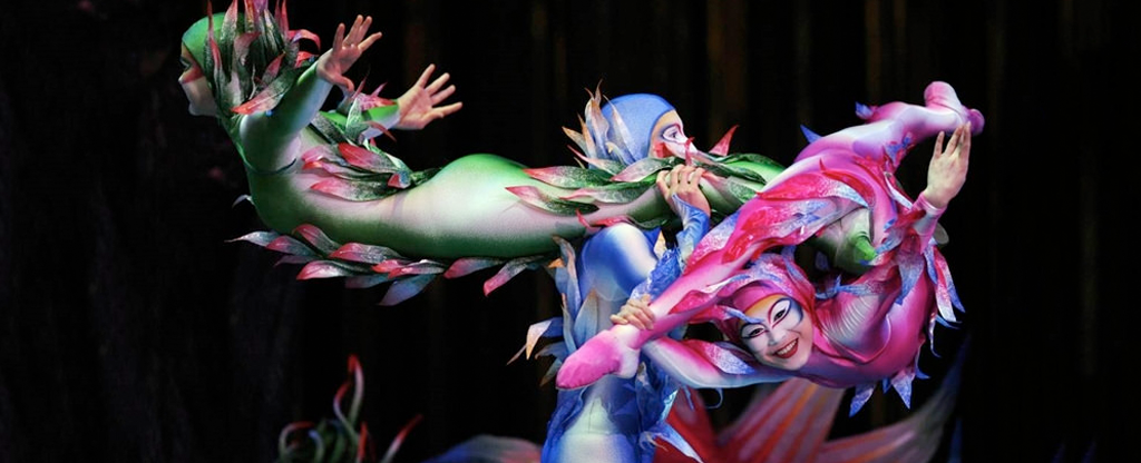Cirque Show in Las Vegas.