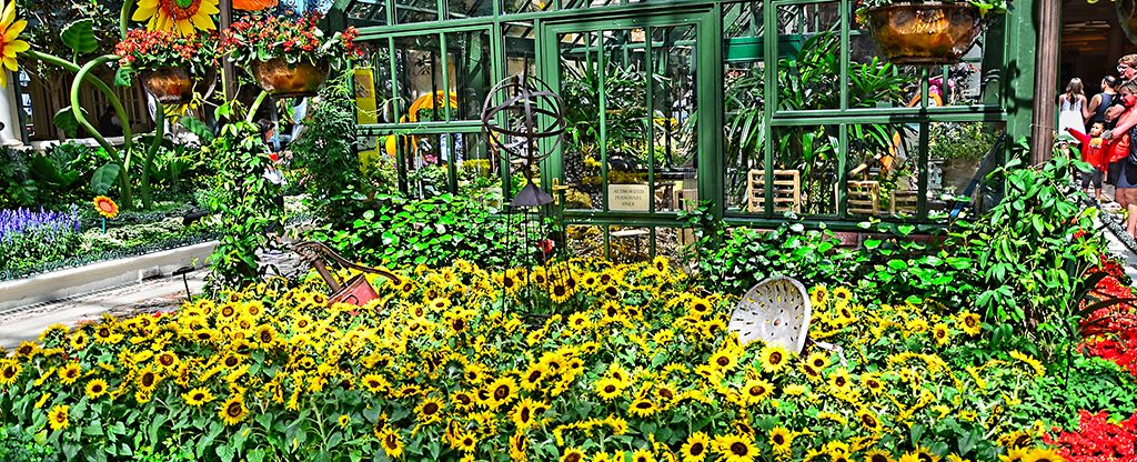 Bellagio Conservatory Gardens.