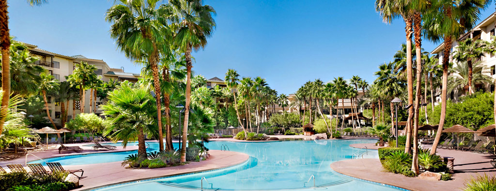 Resort pool area surrounded by palm trees
