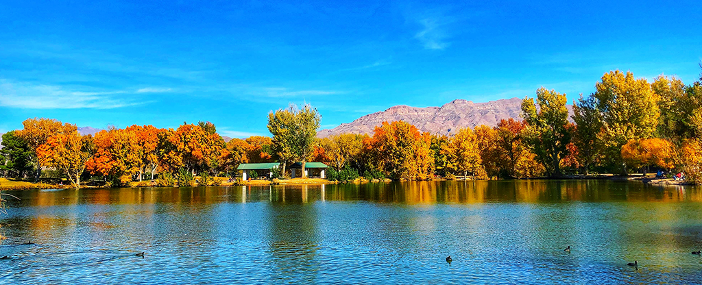 Floyd Lamb Park in Nevada in the Fall.