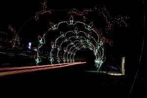 Glittering Lights Tunnel